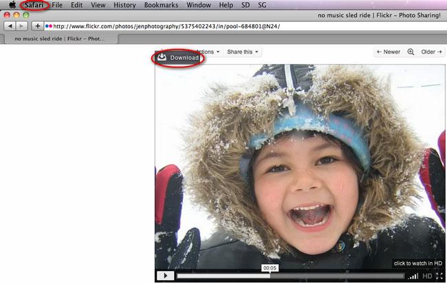 Download Video in Safari