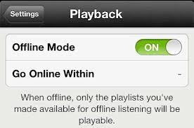 Spotify Offline Access